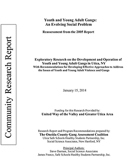 Youth and Young Adult Gangs - 2014 report